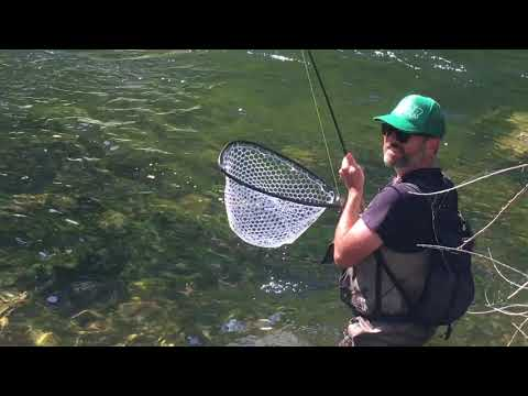 Stanislaus Fly Fishing