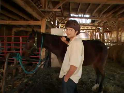 Amish Youth Finds His Way Back Home