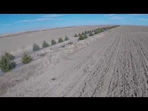 Land for Sale: 160 Acre Organic Farm 6 miles So. of Sidney, Nebraska