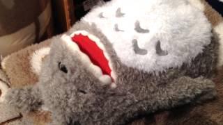 Repeat youtube video Sleeping, talking Totoro!