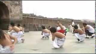 Wudang Daoist Traditional Kung Fu Academy - Basic Training & Flexibility