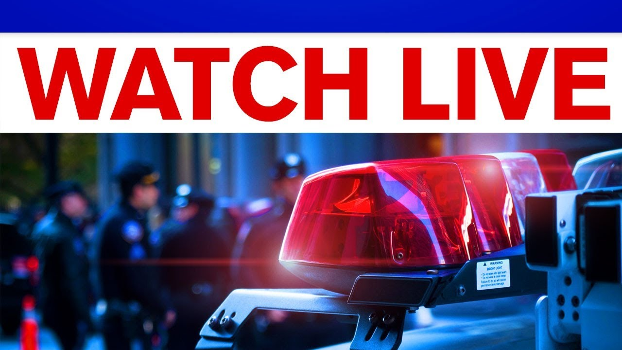 21 alleged gang members arrested in New York City murders