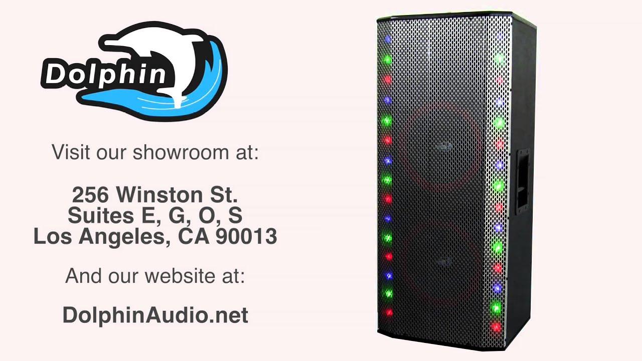 Sp 141bt Dolphin Audio Party Speaker 2x12 Quot Woofers