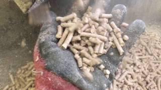 Brikol - Próba peletowania płyty wiorowej i sosny z mebli