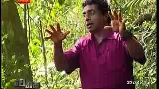 Hela Basa Part 2, Ecologist Thilak Kandegama  wenasa ITN thumbnail