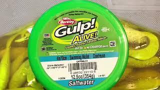 Berkley Gulp Alive Saltwater Berkley Gulp Alive Swimming Mullet Buy Gulp Alive @ Ocean State Tackle