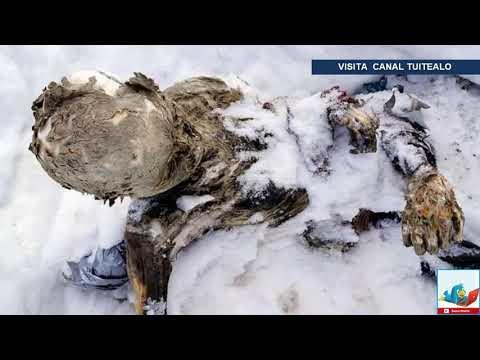 Recuperan 3 cadáveres momificados en el Pico de Orizaba