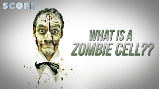 What is a ZOMBIE CELL?   SCOPE TV