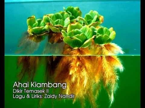 Ahai Kiambang - Dikir Temasek II