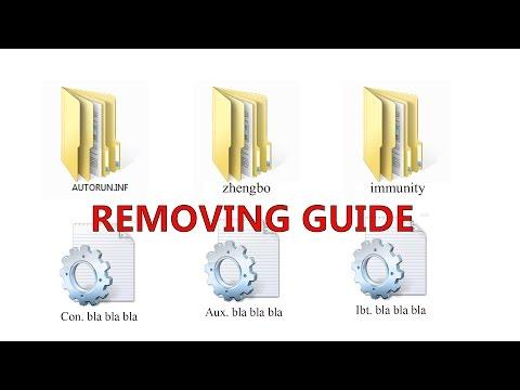 How To Remove Autorun.inf Folder Containing zhengbo, immunity, Con, Aux etc