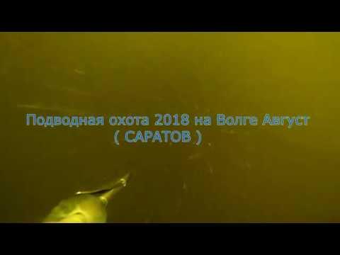 Подводная охота 2018 на Волге Август (Саратов)