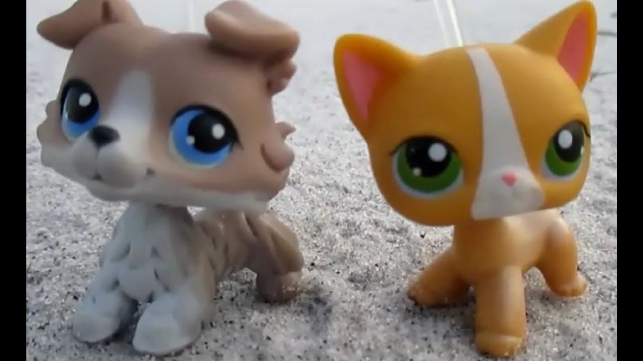 Lps Full Episodes Series Angelinas Greatest Adventure Youtube