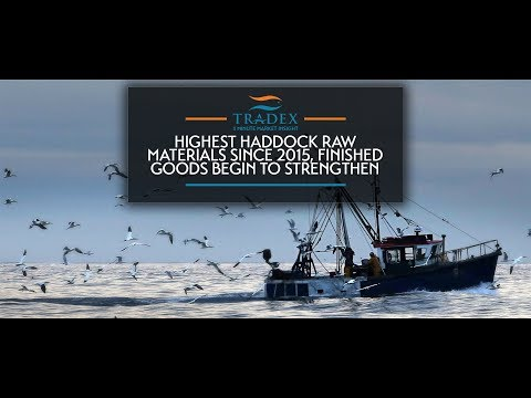 3MMI - Highest Haddock Raw Materials Since 2015, Finished Goods Begin to Strengthen