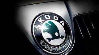 Skoda Octavia 1.8 TSI холодный запуск двигателя зимой в -30 градусов