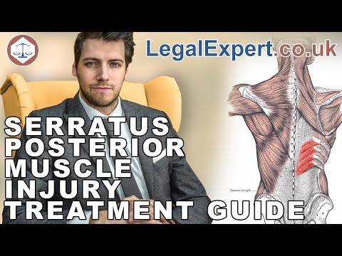 Serratus Posterior Muscle Injury Treatment Guide ( 2019 ) UK