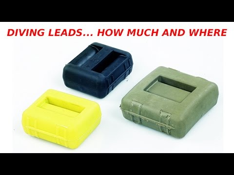 #7 - Leads... How much? What kind of belt? Ankleweights and jacket?