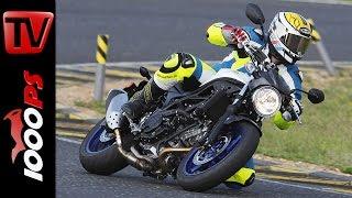 Suzuki SV650 | Naked Bike Test Rennstrecke(Die neue Suzuki SV650 im Test auf der Rennstrecke. Nastynils, Vauli und die deutsche Rennfahrerin Stefanie Menzel testen das Naked Bike für Einsteiger von ..., 2016-06-05T11:37:34.000Z)