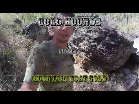 Mountain Goat Gold