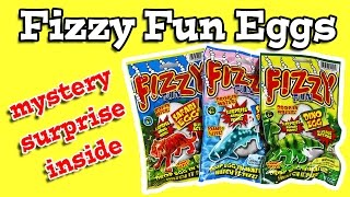 Fizzy Fun Eggs Surprise Inside!!
