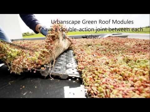 Green Roofs: The LiveRoof Difference