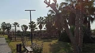 Турция 2 января 2021 г прогулка до моря от отеля PrimaSol Hane Garden