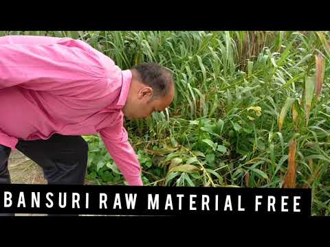 #296 HOW To START BANSURI // FLUTE BUSINESS , FREE RAW MATERIAL