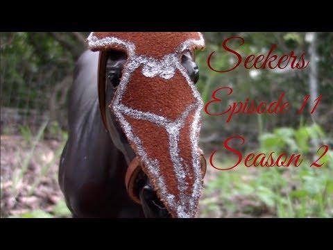 Breyer Horse Series Seekers Season 2 Episode 11