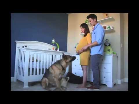 Time Lapse ibu hamil