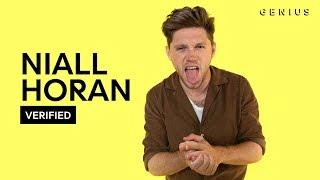 Niall Horan Nice To Meet Ya Official Lyrics & Meaning | Verified