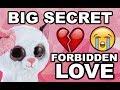 A beanie boo's love story - Forbidden romance part 1 ( Muffin's big secret ) part 1