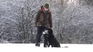 Luca - Winter 2010