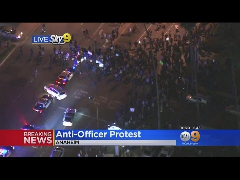 Hundreds March In Anaheim, Demand Arrest of LAPD Officer