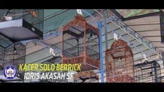 Pasca mabung Solo Berrick milik Idris Akasah SF ce