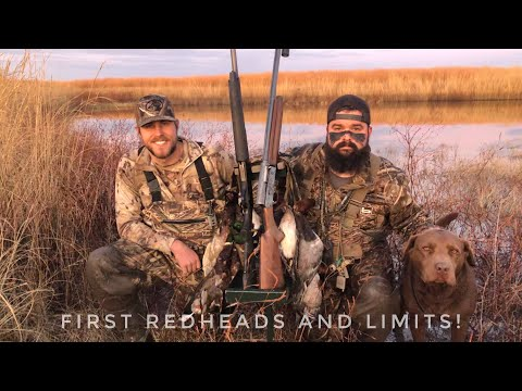 Duck Hunting 2019! Redhead Limits With Mallards And Pintails In The Set! (INSANE) FT Outdoor Limits!