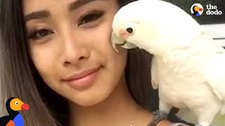 Rescue Cockatoo Loves Sunbathing and Dancing With Mom | The Dodo