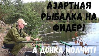 Азартная рыбалка на фидер А донка молчит