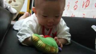 小さく生まれた息子、生後7ヶ月。はらぺこあおむしのガラガラがお気に入...