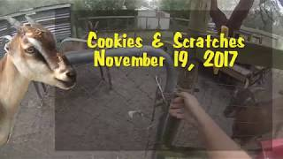 Cookies & Scratches - November 19, 2017