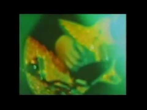 "The Cocteau Twins/Faye Wong - rare collaboration - ""The Amusement Park"""