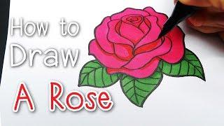 DRAW : A Rose  [ ดอกกุหลาบ ] #สอนวาดรูปแบบง่ายๆ ★Tutorial For Beginner★ New Update |
