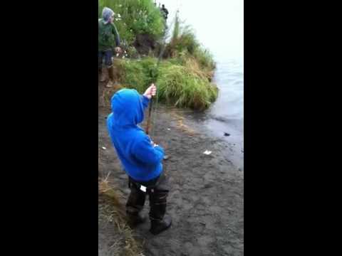 Brent Fishing