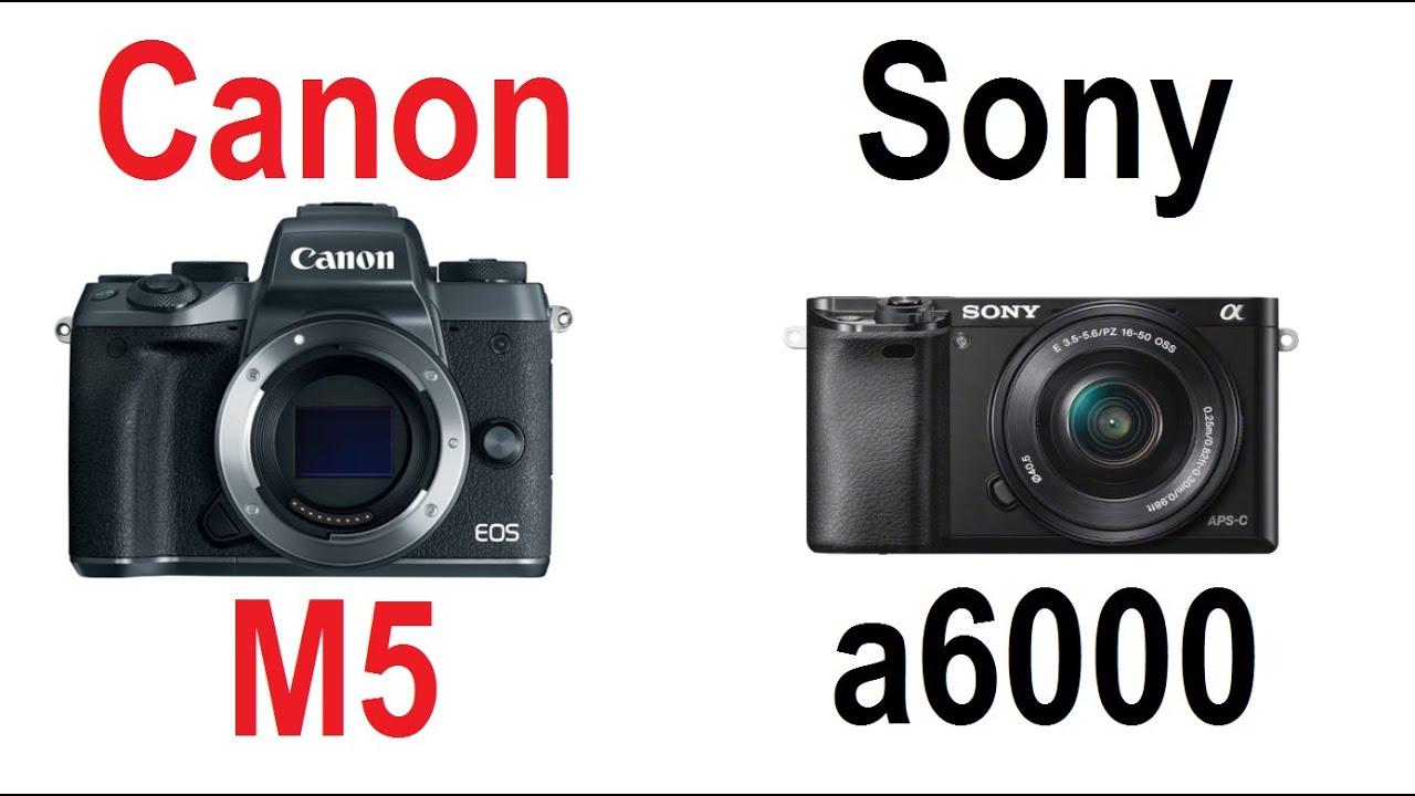 sony ilce 6000. canon eos m5 vs sony a6000 (ilce-6000) ilce 6000 n