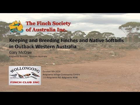 Keeping and Breeding Finches and Softbills in Outback Western Australia - Gary McCrae