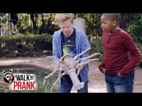 Pool Monster | Walk The Prank | Disney XD