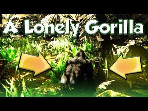 A LONELY GORILLA (Wild Animals Games Video)