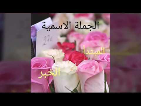 فاطمه صالح ال مهري