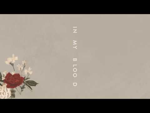 Shawn Mendes In My Blood Audio