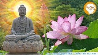 Nhạc Thiền Tịnh Tâm - Nhạc Thiền Phật Giáo Chọn Lọc Thư Giản Mới Nhất