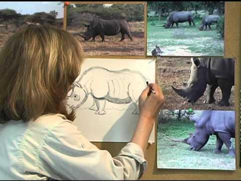 How To Draw Rhinoceros