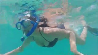 Jennifer and Brenda's Epic Hawaii Turtle Snorkel Tour With Surf You To The Moon